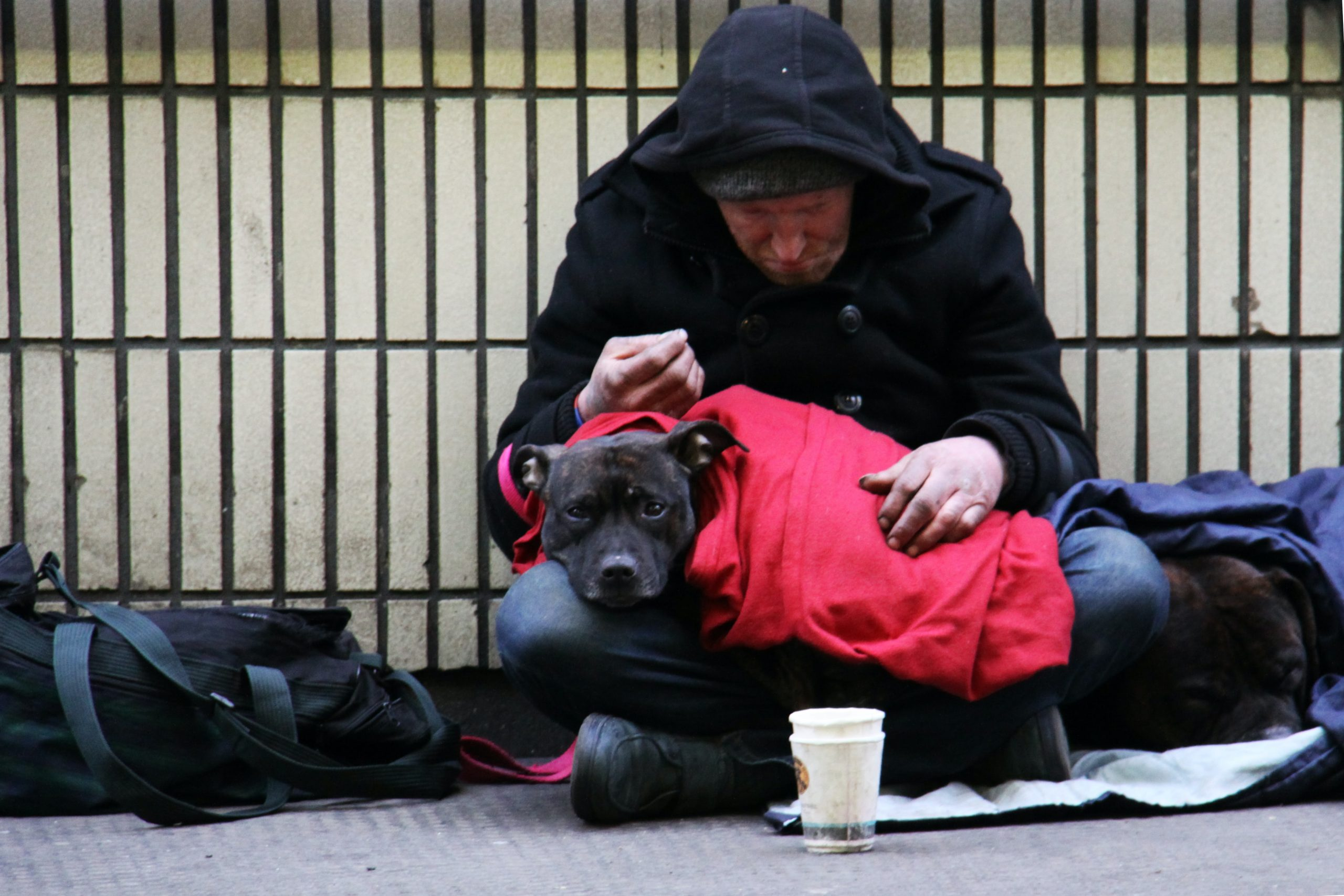 Image of a houseless man sitting in front of a fence with a black dog in his lap